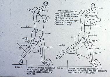 Description: biomechanics-39-s.jpg