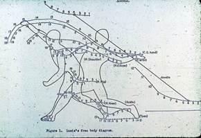 Description: GA.1976.01.00_00.00.03Wizard-stick-Javelin-s.jpg