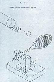 Description: biomechanics-43-s.jpg
